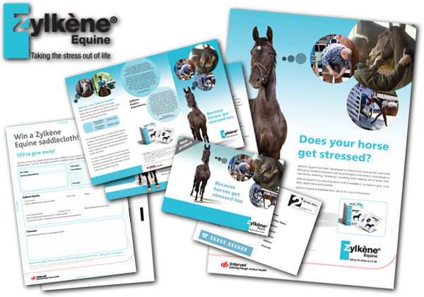 Equine Stress Relief printed materials